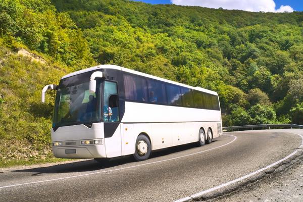 Аренда автобуса на экскурсию